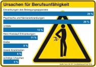 Ursachen für Berufsunfähigkeit (Quelle: Swiss Life 2011, Invalidenbestand Ende 2010). Die Verwendung dieses Bildes ist für redaktionelle Zwecke honorarfrei.