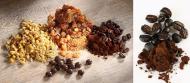 Auch Kaffeekohle zeigt in der Dreierkombination aus Myrrhe, Kamille und Kaffeekohle antiinflammatorische Eigenschaften