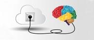 Die Energiebalance des Gehirns ist ein empfindliches Gleichgewicht, das durch Stress gestört werden kann. Bildquelle: © nali/Adobe Stock
