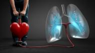 Lungenhochdruck betrifft Herz und Lunge: Für das Herz wird es immer anstrengender, das Blut in die Lunge zur Sauerstoffaufnahme zu pumpen. Die Folge: Atemnot und Leistungsabfall.