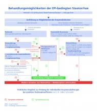 """Algorithmus """"Behandlungsmöglichkeiten der EPI-bedingten Steatorrhoe"""""""