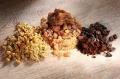 Myrrhe, Kamille, Kaffeekohle zur unterstützenden Behandlung von Magen-Darm-Störungen ©Thomas Weidner